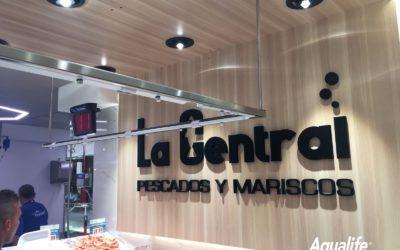 Instalación en el Mercado La Paz