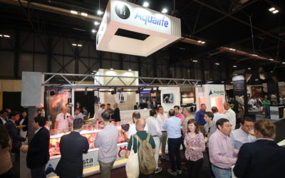 Resumen de Meat Attraction 2019